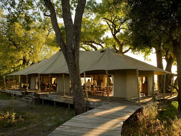 Zarafa Camp - Shady riverine trees