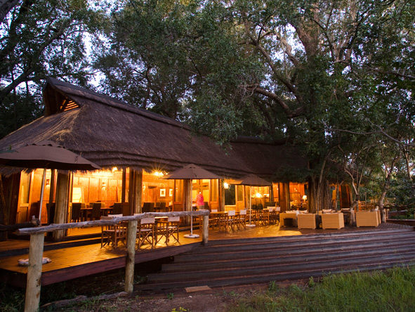 Nxabega Okavango Safari Camp - Morning & night game drives