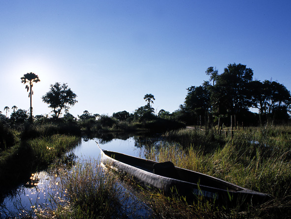 Nxabega Okavango Safari Camp - Guided mokoro rides