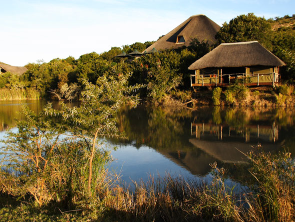 Bayethe Tented Lodge - Malaria-free reserve