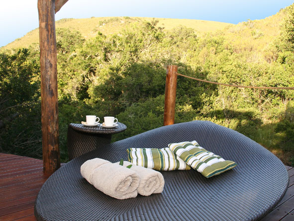 Bayethe Tented Lodge - Stunning views