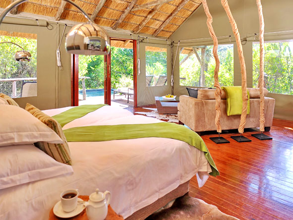 Bayethe Tented Lodge - Spacious suites