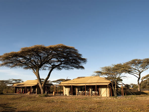 Masek Under Canvas - Ngorongoro Conservation Area