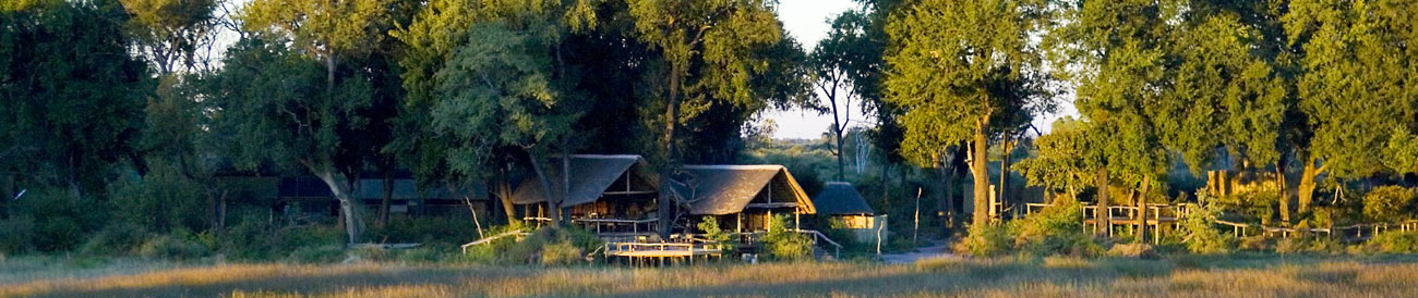 Botswana's Best Safari