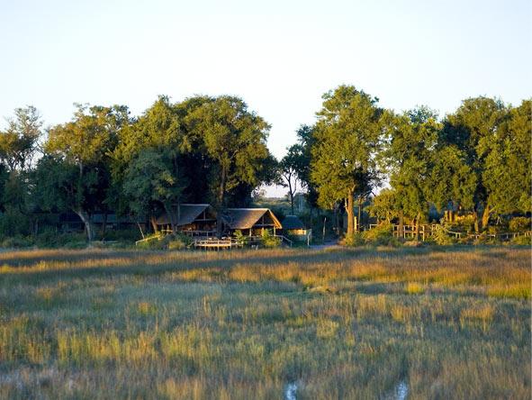 Botswana's Best Safari - Okavango Delta island