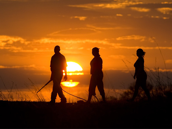 Botswana's Best Safari - Guided walks