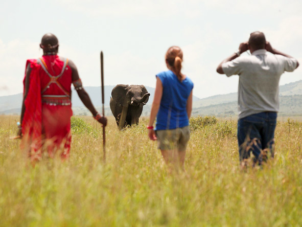 Explore Kenya Private 4x4 Journey - Guided walking safaris