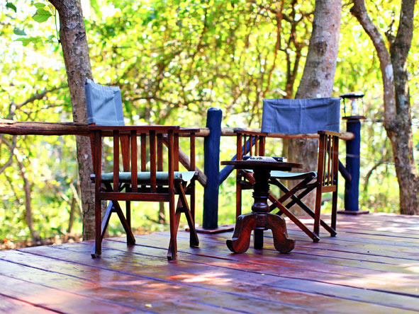 Gombe Forest Lodge - Quiet & serene