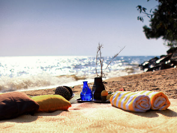 Gombe Forest Lodge - Beach picnics
