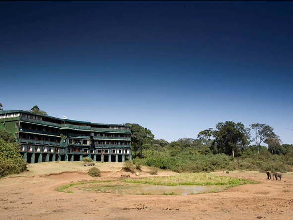 Serena Mountain Lodge - Mount Kenya