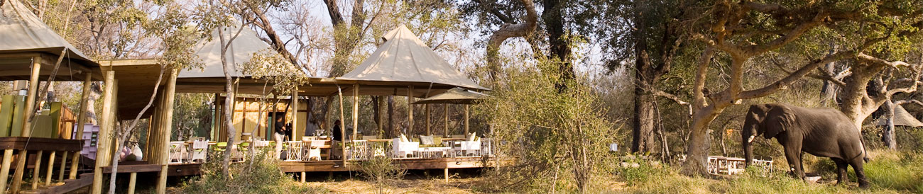 Xaranna Tented Camp