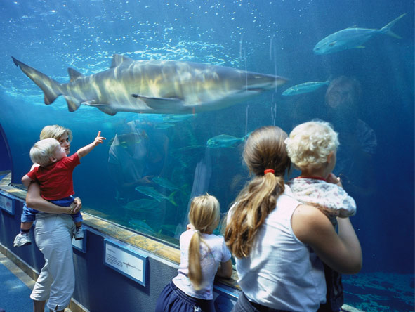 Cape Town, Winelands & Kruger Family Holiday - Family-friendly activities