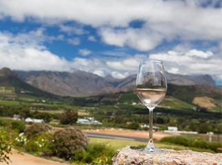 Where to go in Africa in January - wine tasting
