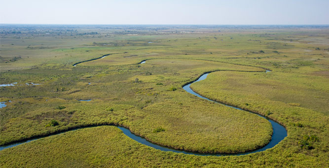 Where to Go in Africa to see Giraffe - Okavango Delta