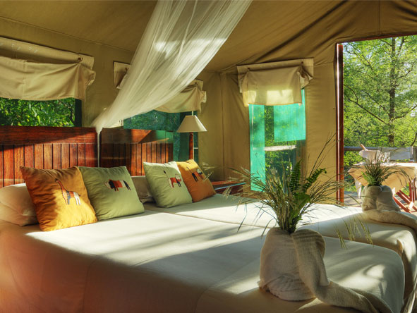 Camp Moremi - Spacious tented suites