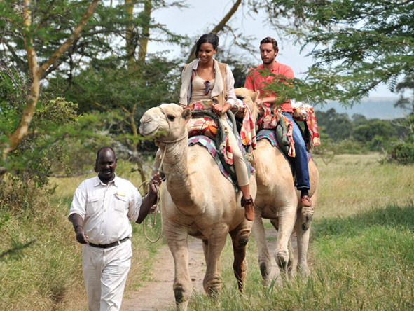 Private 4x4 Family Adventure - Camel-riding safaris