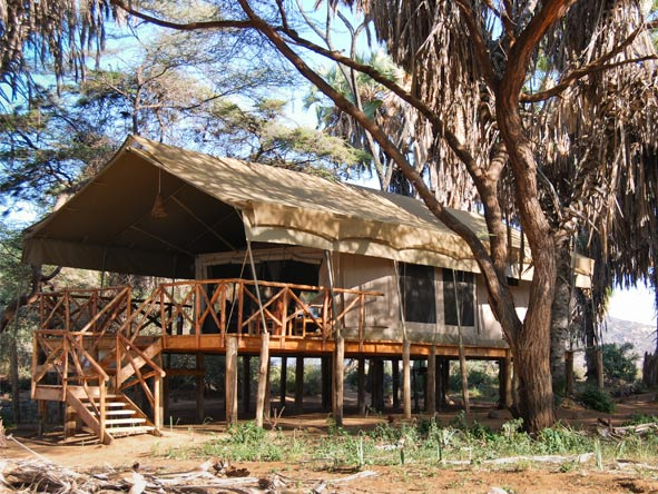 Discover Kenya Private 4x4 Safari - Elevated tented suites
