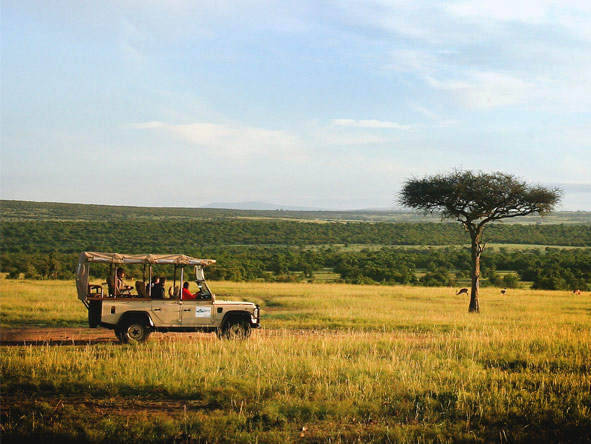 Discover Kenya Private 4x4 Safari - Game drives