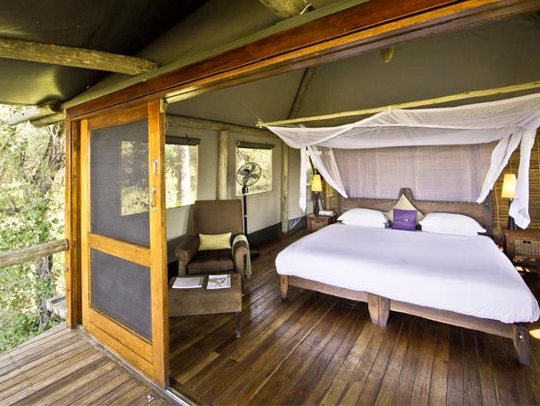 Best of Botswana Safari - Spacious tents