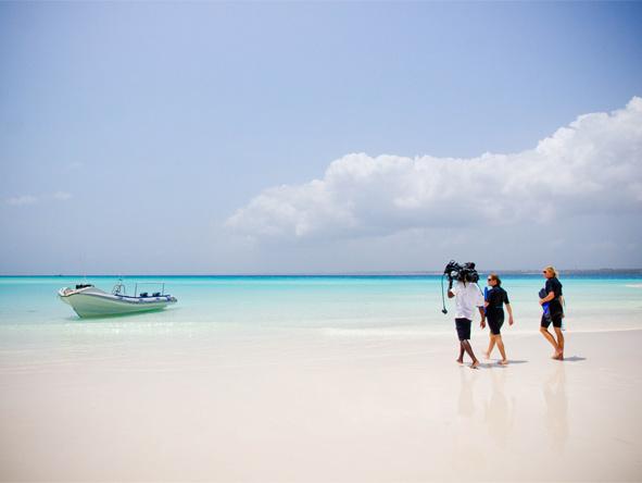 Mnemba Island Lodge - Snorkel & Scuba dive