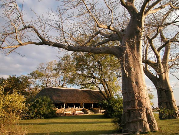 Malawi Bush and Beach for Families - River adventures