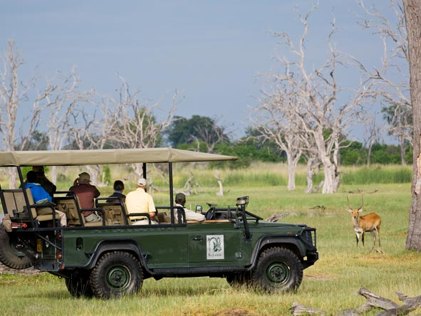 Desert & Delta's game drive vehicles are open-sided to ensure the best photographic opportunities
