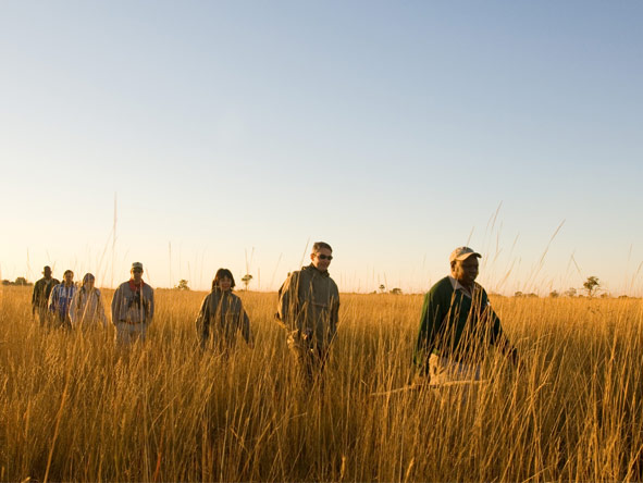 Several Desert & Delta camps lie in private reserves, enabling them to offer night drives & guided walks.