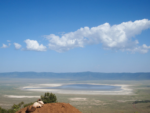 Lake Manyara & Crater Meander - Great Rift Valley