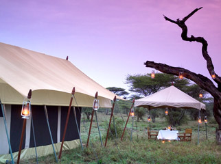 Top 5 Places to Pop the Question - Serengeti Under Canvas
