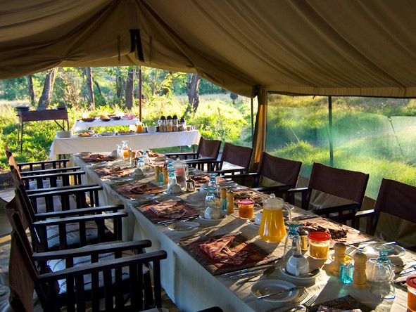 A sunlit breakfast rewards an early start at Dunia Camp, set in the path of the Serengeti wildebeest migration.
