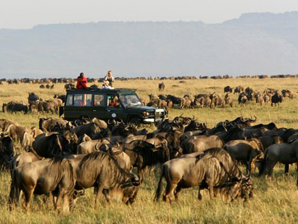 Asilia's Rekero Camp offers front-row seats to the wildebeest migration between June & March.