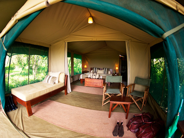 Asilia's safari camps all feature walk-in tented suites complete with bathroom & shaded outdoor areas.