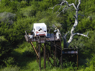 Most Romantic Beds with a View - Chalkley Tree House