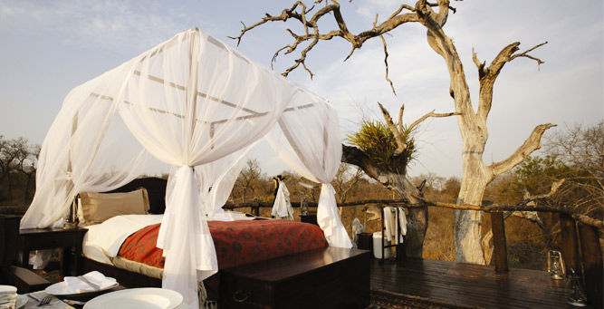 Most Romantic Beds with a View - Chalkley Tree House at Lion Sands
