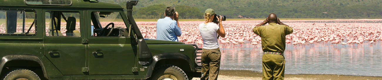 Photographic Safaris - Lake Nakuru