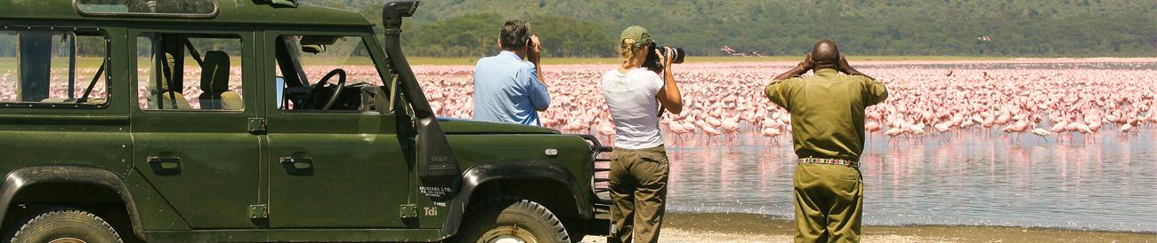Photographic Safaris - Lake Nakuru