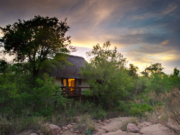 Six-suite Sabi Sabi Little Bush Camp is ideal for extended families & groups to enjoy complete exclusivity.