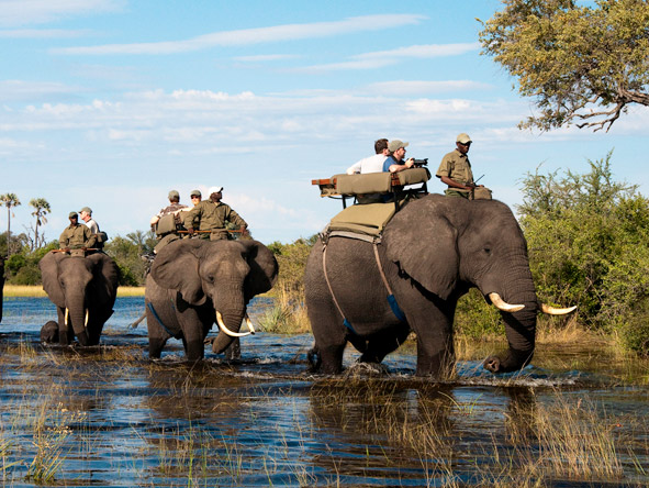 Journey through Botswana - Elephant-back safaris