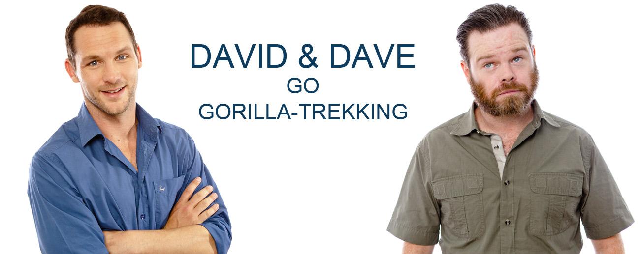 David & Dave go Gorilla Trekking