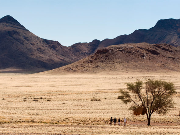 Sossusvlei Desert Lodge - Guided nature walks