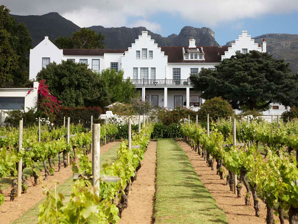 Best of Cape Town & Winelands Explorer - Vineyards & landscaped gardens