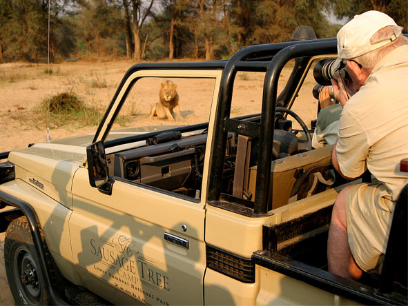 Photographic Safaris - gallery1