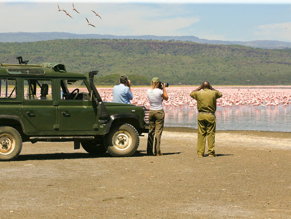 Photographic Safaris - gallery3