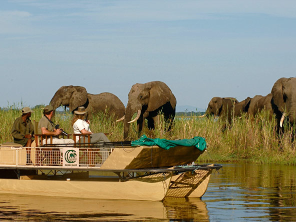 Photographic Safaris - gallery5
