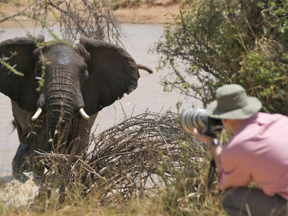 Photographic Safaris - gallery8