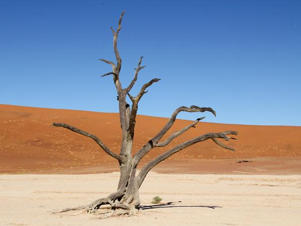 Namibia Circuit - Deadvlei
