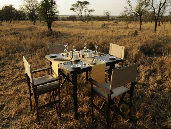 Natural Tanzania - Alfresco dining