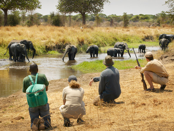 Natural Tanzania - Walking safaris