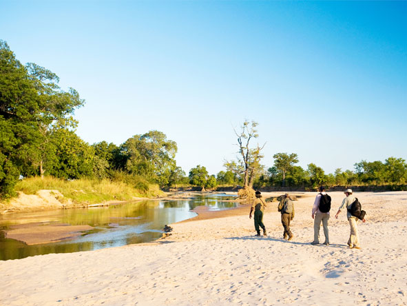 Safari & Beach Exploration - Walking safaris