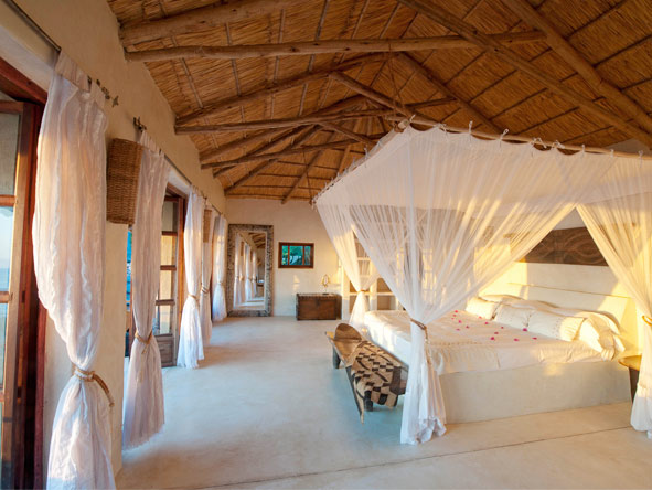 Safari & Beach Exploration - Spacious suites